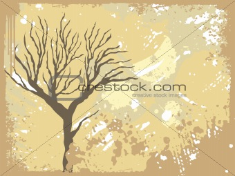 texture background with dead tree
