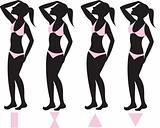Body Types 1