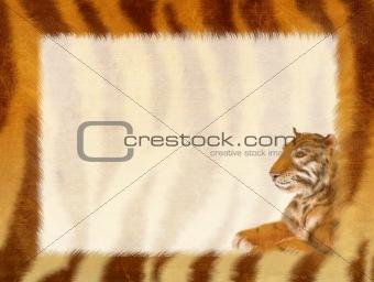 Grunge frame - fur of a tiger