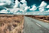 Road in Wicklow