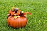 Decorative pumpkin on green grass