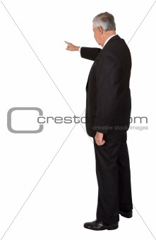 business man doing a presentation