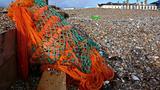 Orange net beach