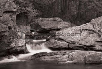 Waterfall and forest in B&W