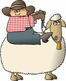 Sheepy Rider