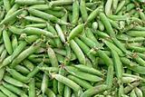 Organic Pease