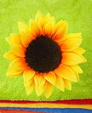 Flower on multicolor towels