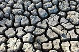 cracked dried ground