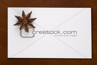 Blank Card with Star Anis