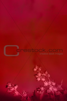 Beautiful deep red background with flowers