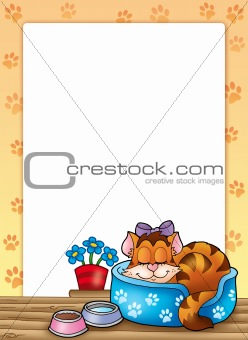 Frame with cute sleeping cat