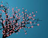 Vector illustration of cherry blossom