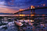 Marcelo Fernan Bridge found in Cebu City Philippines