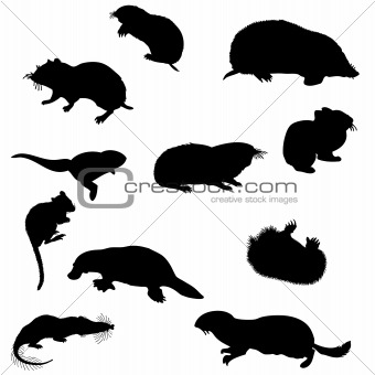 beavers silhouettes set