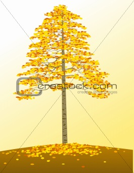 Autumn tree and background
