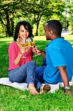 Happy couple having wine in park