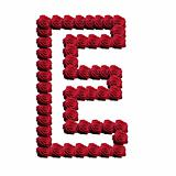Blooming roses forming the alphabet uppercase letter E