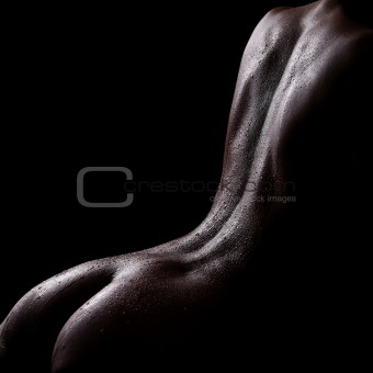 artistic nude body parts