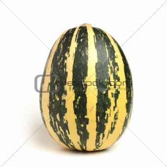 Grenn pumpkin