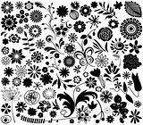 vector flower elements