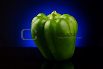 Green sweet pepper on blue background