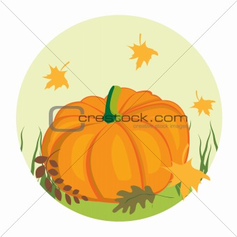 Autumnal background with pumpkin