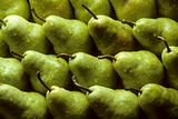 Bartlet pears lined up