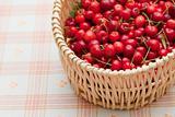 Cherry basket
