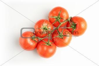 Six tomatos on white