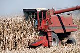 Combine and Corn