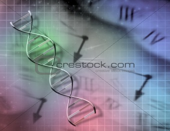 Clock and DNA