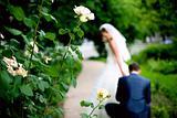 wedding etude