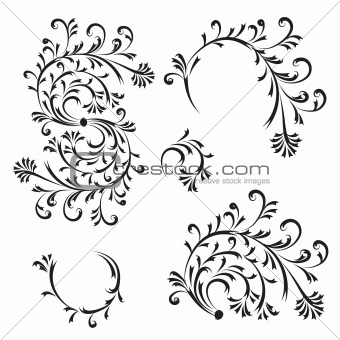 Floral ornament, design elements