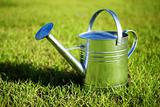 Shiny metal watering can in the grass