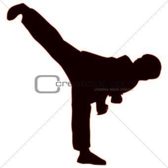 Martial arts - kung-fu high kick