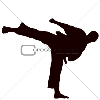 Martial arts - karate kick. Yoko gery.