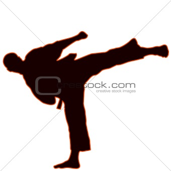 Martial arts - karate. Yoko gery.