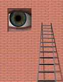 Ladder and Large Eye