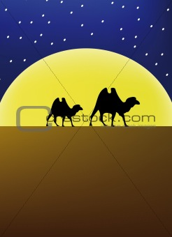 caravana at night