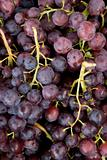 uzum:grapes,bunch, clluster, clusters, fruit, crop,