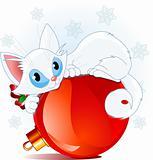 White Christmas cat