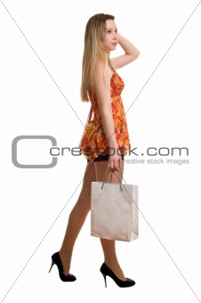 beautiful girl with the bag