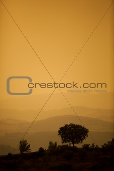 Typical Italian landscape at sunset in the hills of Umbria