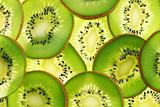 Back projected (lighted) cross sections of kiwi