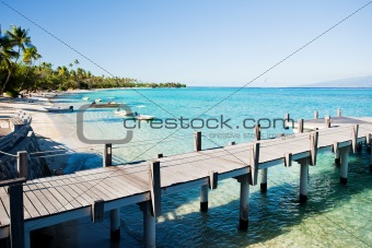 Little jetty and boats on tropical beach with palms