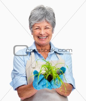 Happy older female gardener holding a plant in her hand
