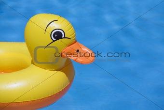 plastic duck