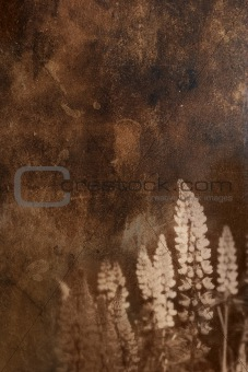 grunge background with floral ornament