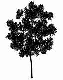 Generic tree