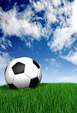 football ball on green grass - soccer
